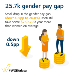 25.7k gender pay gap - small drop in the gender pay gap (down 0.5pp to 20.8%).