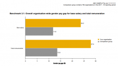 Example benchmark report gender pay gap
