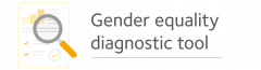 Gender equality diagnostic tool