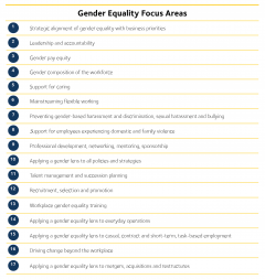 Gender equality focus areas