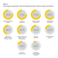 2019 Scorecard chart 7 - DV support mechanisms