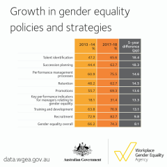 Five year data - gender equality strategies and policies