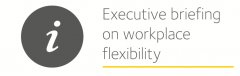 image is decorative and depicts executive briefing on workplace flexibility